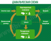Оформление отчетов по переработке давальческого сырья