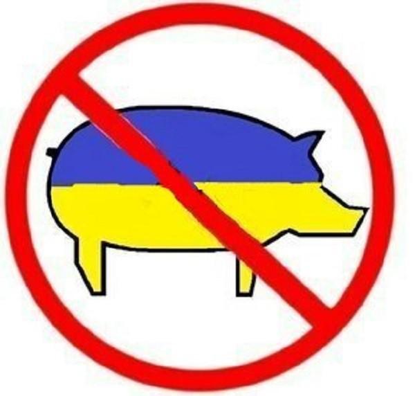 стоп укр. свинина.